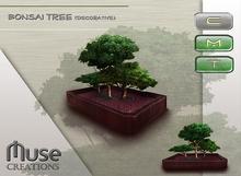 .:Muse Creations:. Bonsai tree decorative
