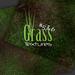 Grass Textures - Mini Pack # 5 & 6