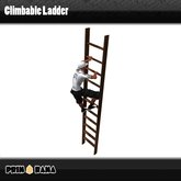 Working Ladder ™