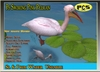 Ps Free Swiming Pelican Bird Animal