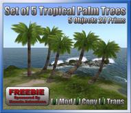 Freebie *Set of 5 Tropical Palm Trees* Kamala