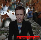 Dr House face mask