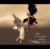 .::Y&R::. I won't let you fall couple pose(boxed)