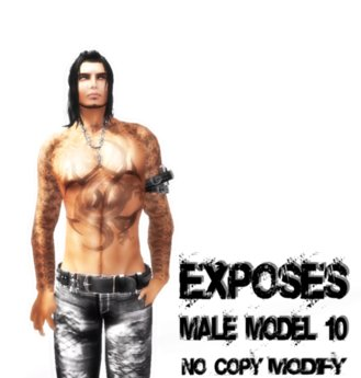 EXPOSES - MALE MODEL 10 - NO COPY