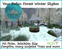 little winter forest skybox