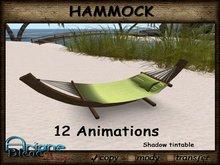Beach * Hammock * Outdoor