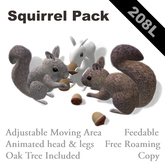 Squirrel Pack(feedable, copy)