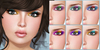 cheLLe (eyeshadow) Starlight
