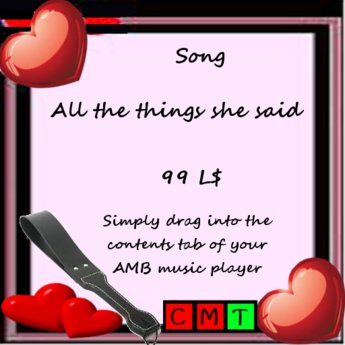 Song All the things she said