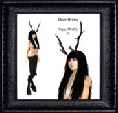 Deer Horns  (boxed)