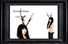 Reindeer Horns  (boxed)
