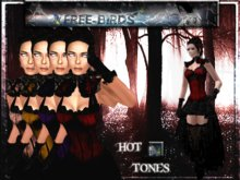 ~~FREE-BIRDS~~  Victorian Gothic Lady ~~complete outfit ~~ H. T