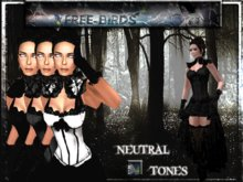 ~~FREE-BIRDS~~  Victorian Gothic Lady ~~complete outfit ~~ N. T