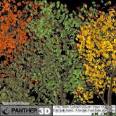 P3D ADAS GARDEN Rowan Trees '09 Redux