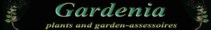Gardenia%20banner