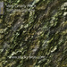 Skye terrain texture vg rock sample 3