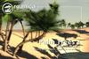 [ Organica ] Palm Trees 2