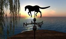 CJ Windsign - Weather Vane Horse / Stallion - c + m - only 2 Prim