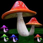 Aqua's Fantasy Mushroom