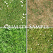 Quality sample grass