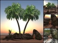 PALM TREE & STONE SIT ANIMATION
