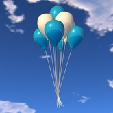 Balloon Bunch - Blue and White - Xntra City Balloons