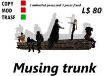 Musing trunk box