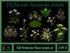 10 flower textures white