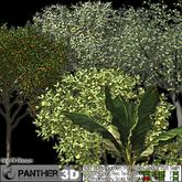 P3D ADAs Garden Fruit Trees Redux 2011 Set 1