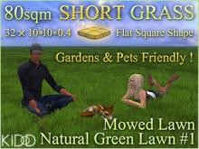 32 SHORT MOWED LAWN * 80 sqm * FLAT SQUARE * NATURAL GREEN MOWED LAWN * 10m x 0.4Tall * 2Prims Each