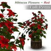 Full Perm Garden Flowers V.8 - Hibiscus Red