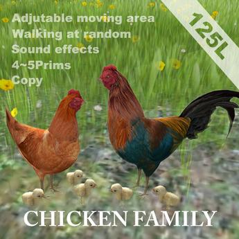 Chicken Family