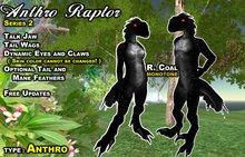Anthro Raptor AV R.Coal