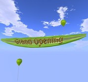 Banner - Grand Opening - Green - MOD/COPY - Xntra City Balloons