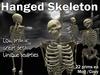 Dead Center: Hanged Skeleton