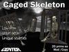 Dead Center: Caged Skeleton