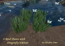 4 Reed Plants with Dragonfly emitter by Alzahra Ames