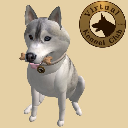 VKC® Silver Siberian Husky - Artificially Intelligent (AI) Trainable Dog - No Food Required - Pathfinding