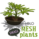 LOLO Potted House Plant #1 (100% mesh, counts as 1 prim)