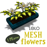 LOLO potted white flowers (100% mesh, equals one prim!)