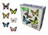 Pack of 6 Flying Butterfly (2 animation for each)