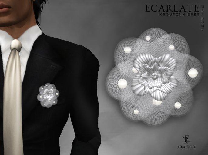Ecarlate - 10 Buttonhole / boutonniere - Mainomy