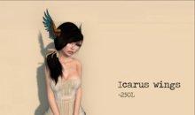 Icarus Wings by Flightless