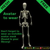 mesh skeleton avatar