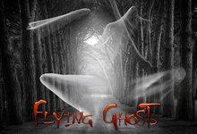 Boudoir Halloween-Flying Ghosts