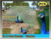 Most Realistic Animated Blue Peacock Sculpted   Copyable Bird animal