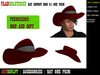 FREE HAT COWBOY HAT COUNTRY HAT MOD 01  / CHAPÉL COUNTRY FREE (Mod and Copy)
