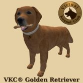 VKC® Golden Retriever - Artificially Intelligent (AI) Trainable Dog - No Food Required - Virtual Kennel Club Dogs