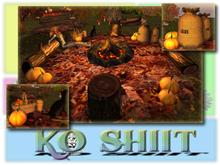 Love Autumn Campfire