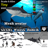 *R&Ms* Mesh great white (SS size)